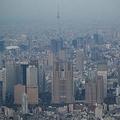 新宿の高層ビル群。中央は東京都庁=東京都新宿区で2020年4月、本社ヘリから吉田航太撮影