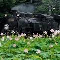 東武鉄道がZoomでSL運転の様子を配信へ 自宅で乗車体験ができる