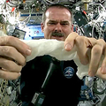 「宇宙で水を吸ったタオルを絞ったらどうなるのか?」ムービーが話題に
