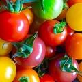 「大人が好きな野菜」首位は11年連続でトマト 理由に健康志向など