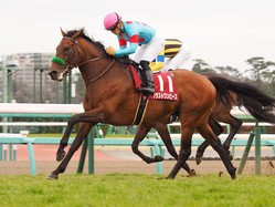 2020オーストラリア「ザ・チャンピオンシップス」に日本馬が予備登録