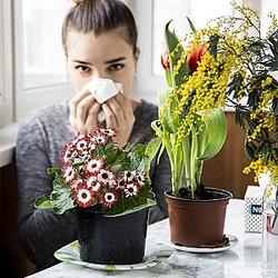 花粉症に困っている人必見!花粉症対策におすすめの食事・NGな食事とは?