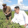 三池淵群中興農場を現地指導した金正恩氏(2018年7月10日付朝鮮中央通信より)