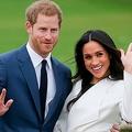 ヘンリー王子夫妻の王室離脱 イギリス人が怒る訳