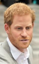 ヘンリー王子、公の場でカップルデビュー!?/写真:SPLASH/アフロ