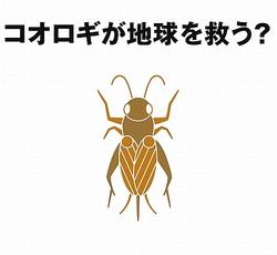"""無印良品が""""昆虫食""""参戦、「コオロギせんべい」発売へ"""