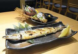 居酒屋「さくら水産」のサンマの塩焼き。不漁の今年は仕入れがあったときだけメニューに加えている。広報担当者は「仕入れは毎日が綱渡りです」と話す=2019年9月3日午後、東京都中央区、土居新平撮影