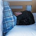 ベッド 壁から10cm離せば熟睡