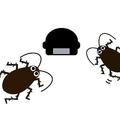 毒餌剤 ゴキブリを呼び寄せる?