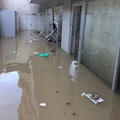 多摩川氾濫 反対運動と関係なし?