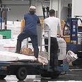 荷台に人を乗せて市場内を走るターレ。禁止されているにもかかわらず、驚くほど二人乗りは多かった