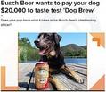 【海外発!Breaking News】犬用ビール開...