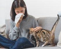 秋の花粉症対策のウソ・ホント。マスク、洗顔…などの効果を医師に聞いた