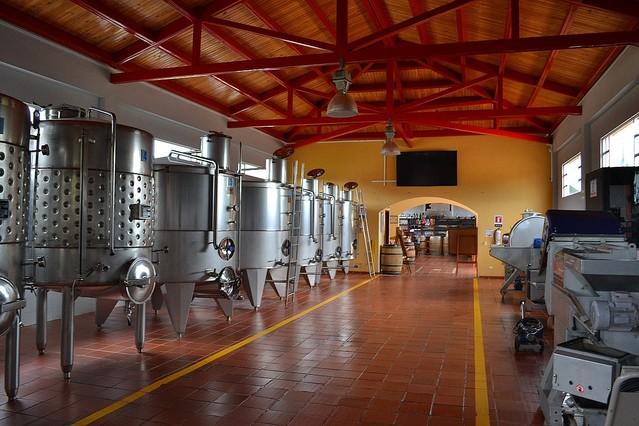 「まるで血の海」の声 タンクから噴き出し5万リットルのワインが工場から流れ出る