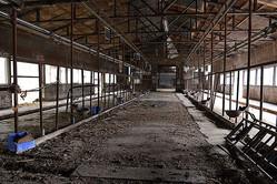 原発事故後「自殺した酪農家」の今も消えない壁の遺言とは