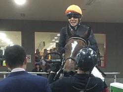 ロカマドールがデビューV!三浦「操縦性の高い馬」
