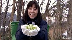 宇賀なつみアナ、『モーニングショー』担当コーナー最後の出演で山菜を「採ったど〜!」
