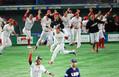 <プレミア12 3決 メキシコ・アメリカ>10回1死満塁 サヨナラ適時打を放ち喜ぶナバーロらメキシコナイン (撮影・白鳥 佳樹)