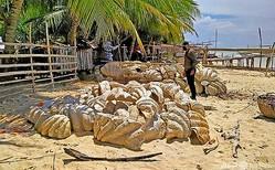 フィリピン・グリーン島で押収された大型二枚貝を調べる沿岸警備隊員。フィリピン沿岸警備隊提供(2021年4月16日撮影、17日提供)。(c)AFP PHOTO / PHILIPPINE COAST GUARD