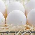 「卵は1日1個まで」の常識は古い アルツハイマー病予防の効果も