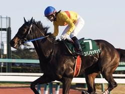 【カペラS】菜七子「1番強いと思って乗っていた」レース後ジョッキーコメント