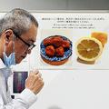 レモンや梅干しの写真が貼られた検疫検査場(9月30日、関西空港で)