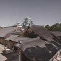 名古屋城の柱に「りょうじ」と落書きか 市が被害届を提出へ