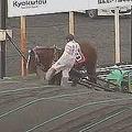 騎手が蹴り上げるシーン(ばんえい十勝のユーチューブ公式チャンネルの動画から)