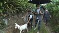 GACKTが幼少期を過ごした村に30年ぶり里帰り 高級食材・ヤギを5頭爆買い
