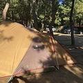 コロナ禍で急上昇のキャンプ人気 うっかり行動でトラブルが増加