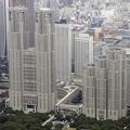 東京で新たに542人がコロナ感染 変異株の増加による再拡大懸念
