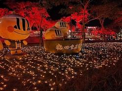 紅葉イルミで気分は日本  屏東の名湯で温泉フェス開催/台湾