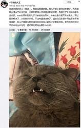 ペットホテルに預けられた猫、一晩で疲労困憊(画像は『--可怕的大王 2019年10月3日付 微博「谢谢大家的关心(嘲讽)。我是当事猫的爹。」』のスクリーンショット)