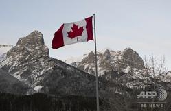 ロッキー山脈を背になびくカナダ国旗(2019年2月7日撮影、資料写真)。(c)Don Emmert / AFP