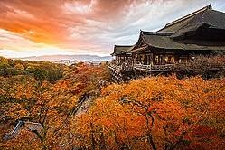 中国メディアは、毎年800万人あまりの中国人観光客が日本を訪れる理由について、ガイドによる分析を紹介した。(イメージ写真提供:123RF)
