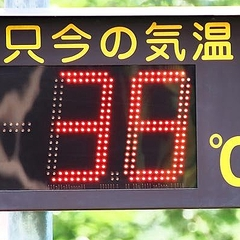 日 月 統計 の は 何 に 東京 なっ で 2 た 夏 回 以来 開始 都心 に