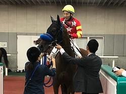吉田豊「メリハリが出ればさらにいい」土曜新潟6R新馬はラブオナヴィータが逃げ切る