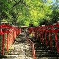 多くの観光客を集める京都 これほどまでに多くの人を集める理由とは?