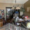 245匹の動物と大量のごみにまみれて生活していた女の子3人が救出された/City of Edgewater Police Department/Facebook