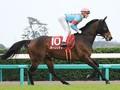 阪神競馬場で開催される天皇賞・春 波乱を起こしそうな伏兵馬に注目