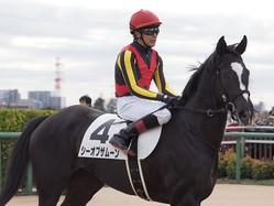 【中山6R/新馬】三浦「今日は能力だけで勝ってくれました」シーオブザムーンがデビュー勝ち