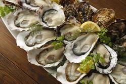 至福の「牡蠣食べ放題」やってるよ♪ カキフライ、生牡蠣、牡蠣ごはんも好きなだけ