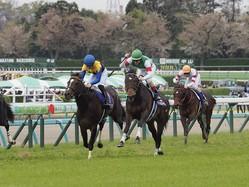 皐月賞ゴール前 レース写真