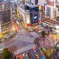 ハロウィン前に渋谷が混雑 軽トラが横転させられ盗撮や痴漢も