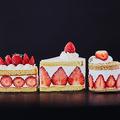 断面が美しいショートケーキ4選