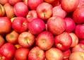 栄養を逃さないりんごの食べ方