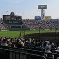 夏の全国高校野球選手権が行われている阪神甲子園球場