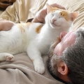 「猫は飼い主を愛しているのか?」3人の専門家が回答
