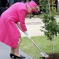 エリザベス女王がスコップ手に植樹 予定外の行動に関係者大慌て