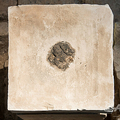 中東エルサレムのイスラエル博物館に展示されている古代の供物台。イスラエル考古学庁提供(撮影日不明、2020年6月2日提供)。(c)Laura Lachman / Israeli Antiquities Authority / AFP